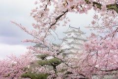 Château du Japon Himeji, château blanc de héron dans le beau che de Sakura Photo stock