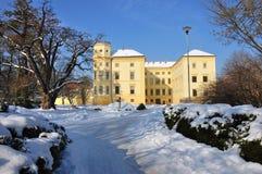 Château en hiver Image libre de droits