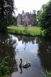 Château et cygne Photographie stock libre de droits