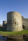 Château et fossé de Pevensey Photographie stock libre de droits