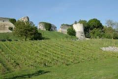 Château et vigne en Aisne, France images stock