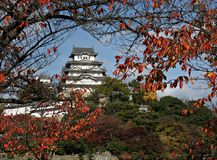 château Himeji Japon Photographie stock