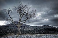 Château Hohenzollern dans l'hiver Photographie stock