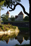 Château médiéval Image libre de droits