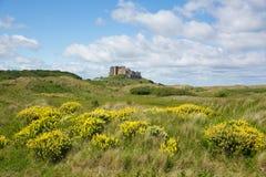 Château médiéval anglais Bamburgh le Northumberland Angleterre est du nord photo stock