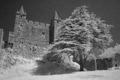 Château médiéval de granit Photo stock