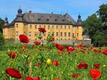 Château romantique de l'eau Schloss Dyck dans Juechen en Allemagne avec un gisement de fleur de pavot photographie stock libre de droits