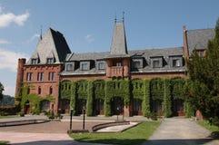 Château rouge photos libres de droits