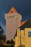 Château royal reconstruit par tour photo libre de droits