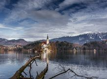 Château saigné par lac avec l'arbre tombé photo stock