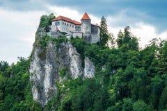 Château saigné sur la colline Photos stock