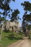 Château sur la roche arénacée Photos libres de droits