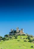 Château sur une colline Image stock