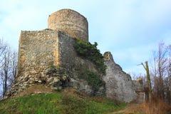 Château Wlen Image libre de droits