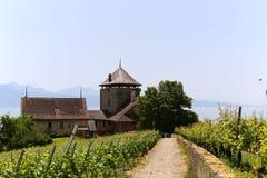 Château de la游览Bertholod或者Bertholod塔在吕特里,瑞士小镇  免版税图库摄影