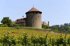 Château de la游览Bertholod或者Bertholod塔在吕特里,瑞士小镇  免版税库存图片
