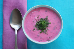 Chłodnik - cold beetroot soup in a bowl. On a tablecloth with a napkin.  Seasonal dish Royalty Free Stock Photos