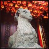 Chèvre dans le temple photos stock