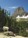 Chèvre de montagne et la montagne iconique du parc national de glacier Photo stock