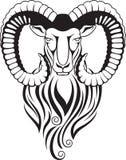 Chèvre de montagne - mouflon avec de grands klaxons incurvés Photos stock