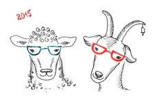 Chèvre et moutons avec des verres Image libre de droits