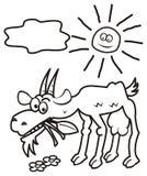 Chèvre et soleil, livre de coloriage Photo libre de droits