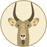 Chèvre - illustration Photo stock
