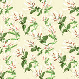Chèvrefeuille de branche Configuration sans joint Collage des fleurs et des feuilles watercolor Photos stock