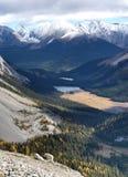 Chèvres de montagne à Kananaskis, Rocky Mountains canadien Image stock