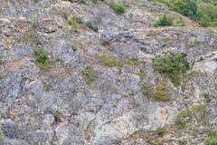 Chèvres sur une haute falaise Photos stock