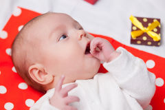 Chéri avec des cadeaux de Noël Photo stock