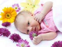Chéri avec la fleur Photos stock