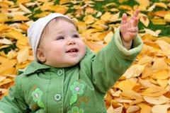 Chéri dans des lames d'automne Photos libres de droits