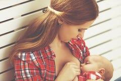 Chéri de allaitement de mère Photographie stock