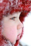 Chéri de l'hiver Images stock