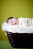 Chéri de sommeil Photos libres de droits