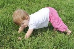 Chéri de sourire apprenant à comique dans l'herbe verte Images stock