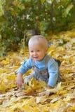 Chéri de sourire jouant dans des lames d'automne Image libre de droits