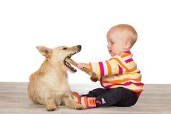 Chéri et chien terrier avec l'os caoutchouteux photographie stock