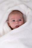Chéri mignonne enveloppée dans un essuie-main blanc Photographie stock libre de droits