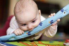 Chéri mordant jouant le couvre-tapis Images stock