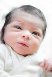 Chéri nouveau-née Photos libres de droits