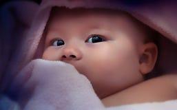 Chéri nouveau-née Image stock