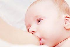Chéri nouveau-née allaitant au sein Photos libres de droits
