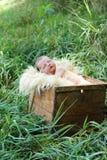 Chéri nouveau-née dans un cadre Photos stock