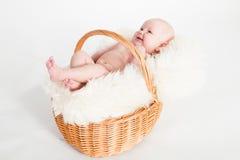 Chéri nouveau-née dans un panier Photo libre de droits
