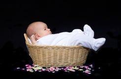 Chéri nouveau-née dans un panier avec des pétales de fleur Image libre de droits
