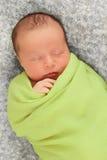 Chéri nouveau-née en vert Images libres de droits