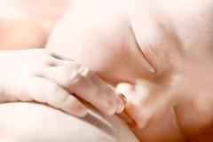 Chéri nouveau-née mangeant du lait maternel Photographie stock