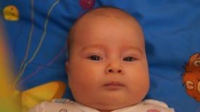 Chéri nouveau-née Petit bébé Bébé regardant dans la caméra Enfant Bébé adorable clips vidéos